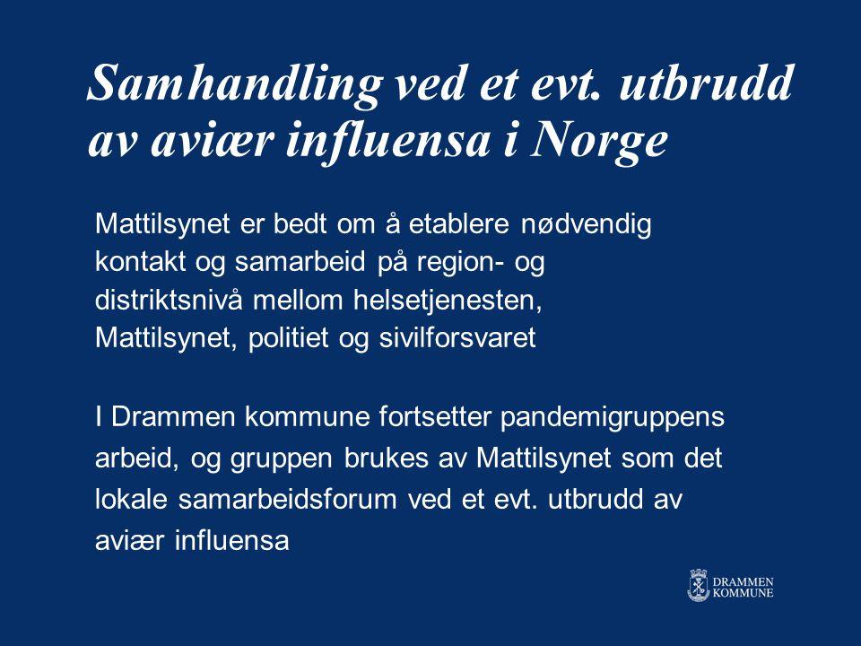 Samhandling ved et evt. utbrudd av aviær influensa i Norge Mattilsynet er bedt om å etablere nødvendig kontakt og samarbeid på region- og distriktsniv
