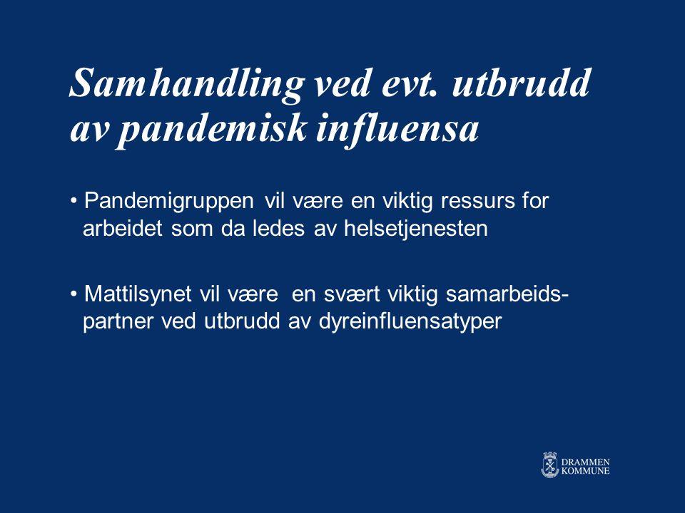 Samhandling ved evt. utbrudd av pandemisk influensa Pandemigruppen vil være en viktig ressurs for arbeidet som da ledes av helsetjenesten Mattilsynet