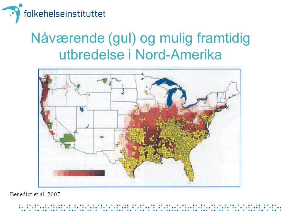 Nåværende (gul) og mulig framtidig utbredelse i Nord-Amerika Benedict et al. 2007