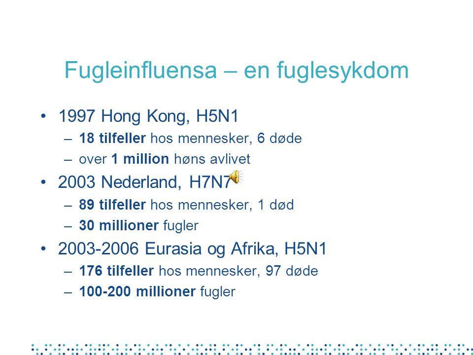 Fugleinfluensa – en fuglesykdom 1997 Hong Kong, H5N1 –18 tilfeller hos mennesker, 6 døde –over 1 million høns avlivet 2003 Nederland, H7N7 –89 tilfeller hos mennesker, 1 død –30 millioner fugler 2003-2006 Eurasia og Afrika, H5N1 –176 tilfeller hos mennesker, 97 døde –100-200 millioner fugler