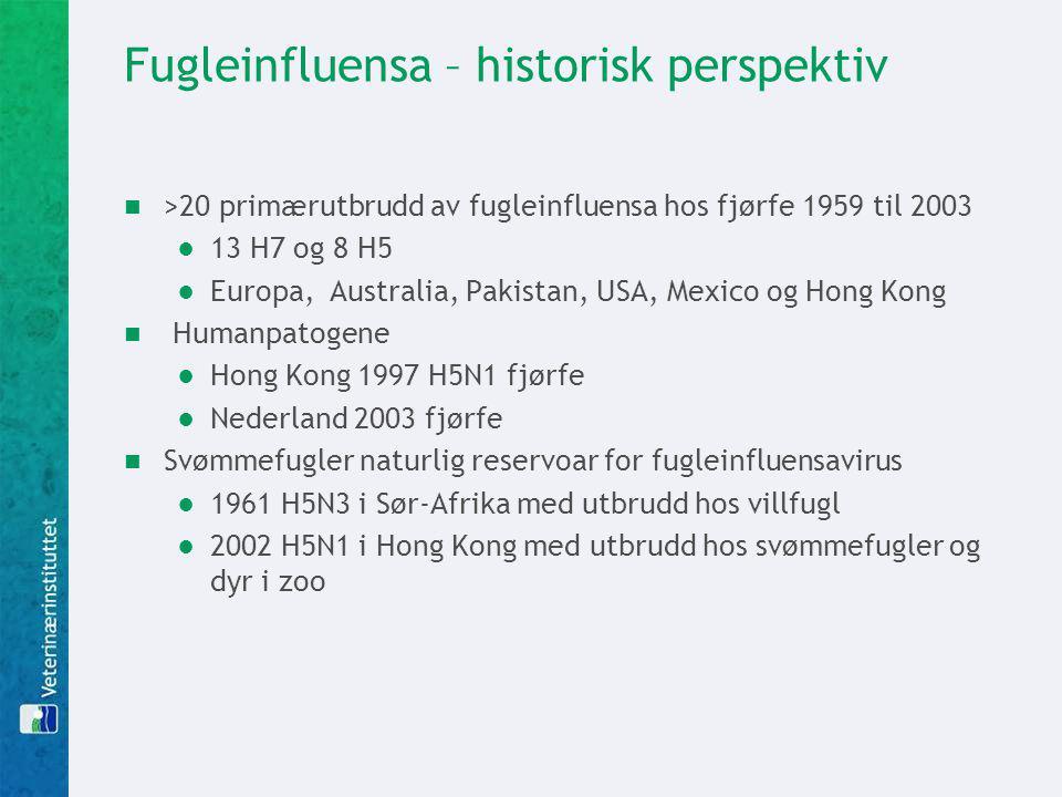 Fugleinfluensa – historisk perspektiv >20 primærutbrudd av fugleinfluensa hos fjørfe 1959 til 2003 ●13 H7 og 8 H5 ●Europa, Australia, Pakistan, USA, M