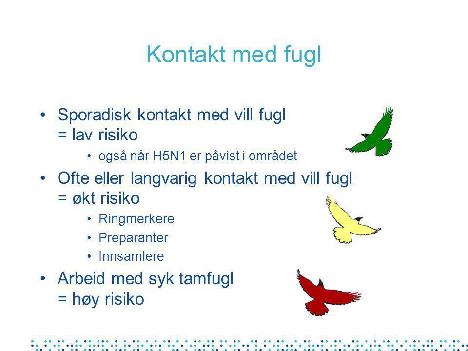 Kontakt med fugl Sporadisk kontakt med vill fugl = lav risiko også når H5N1 er påvist i området Ofte eller langvarig kontakt med vill fugl = økt risik