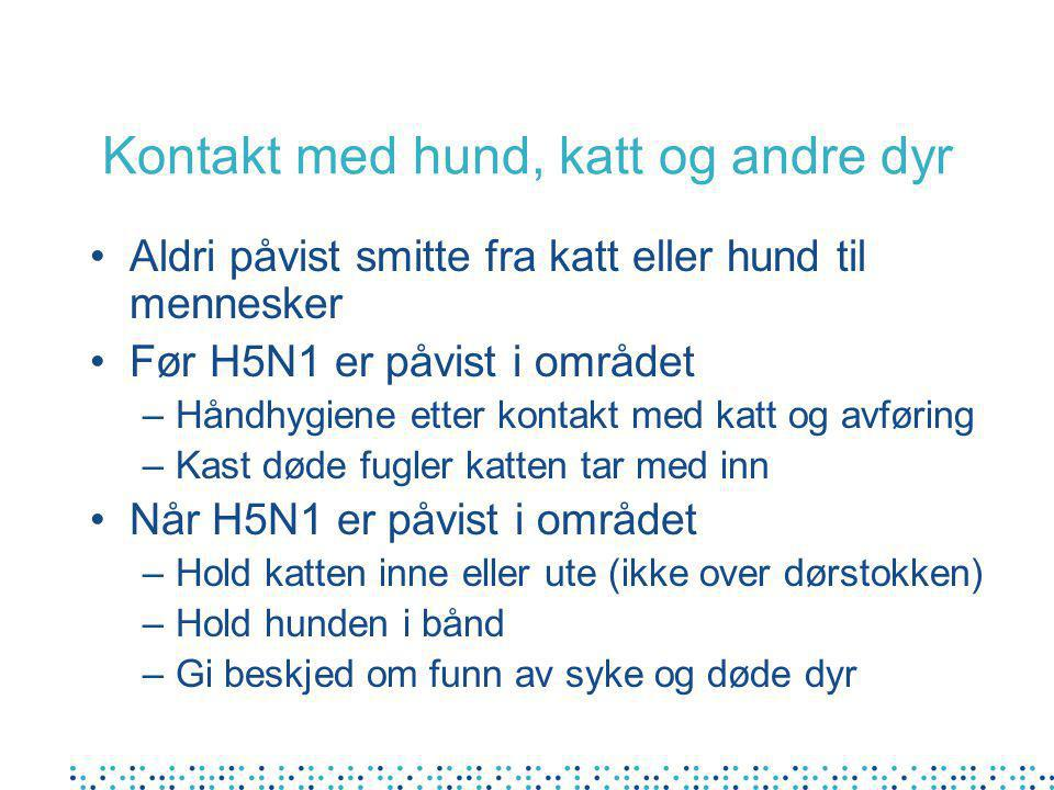 Kontakt med hund, katt og andre dyr Aldri påvist smitte fra katt eller hund til mennesker Før H5N1 er påvist i området –Håndhygiene etter kontakt med