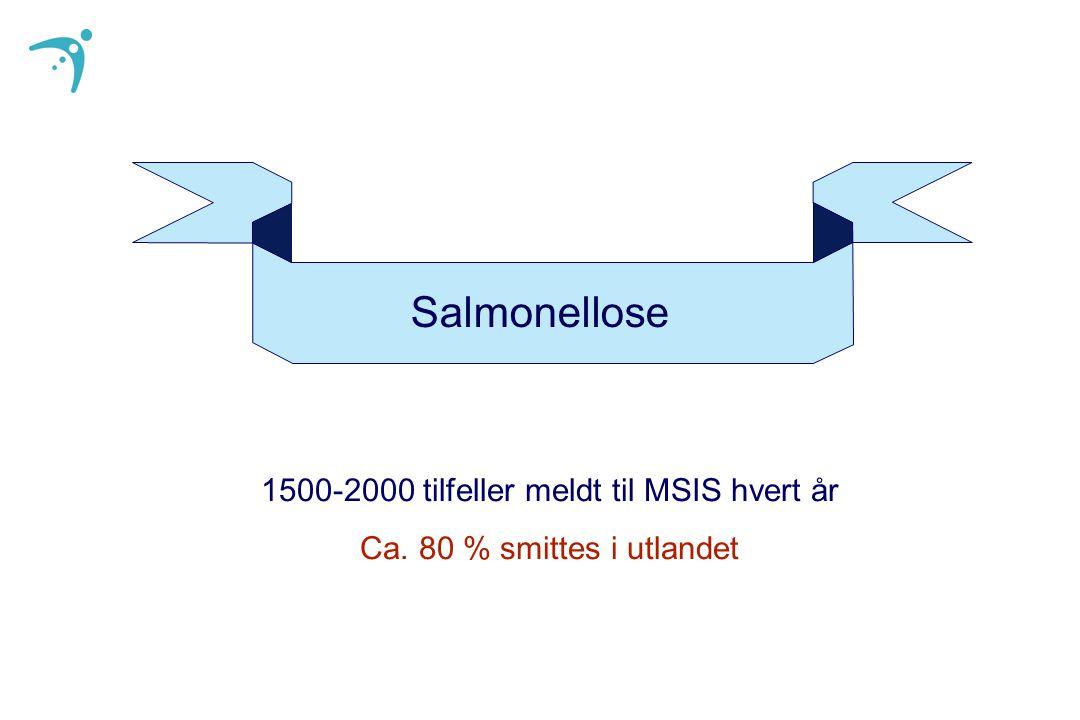Salmonellose 1500-2000 tilfeller meldt til MSIS hvert år Ca. 80 % smittes i utlandet