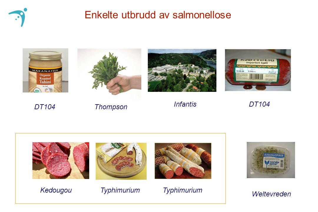 DT104 Enkelte utbrudd av salmonellose Thompson InfantisDT104 KedougouTyphimurium Weltevreden
