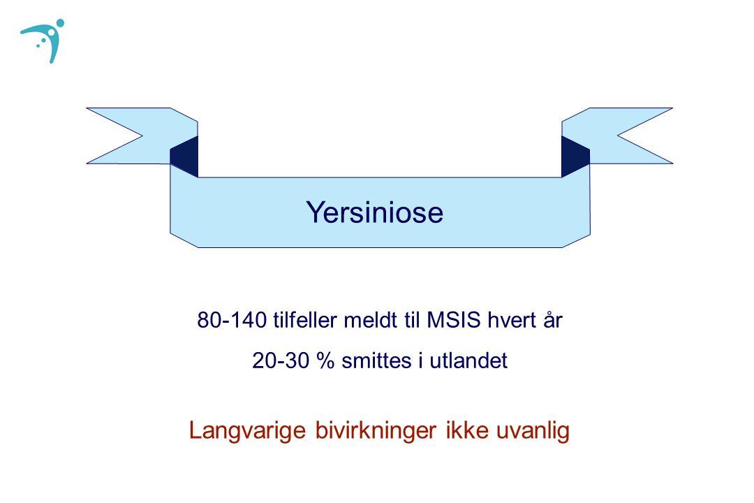 Yersiniose 80-140 tilfeller meldt til MSIS hvert år 20-30 % smittes i utlandet Langvarige bivirkninger ikke uvanlig
