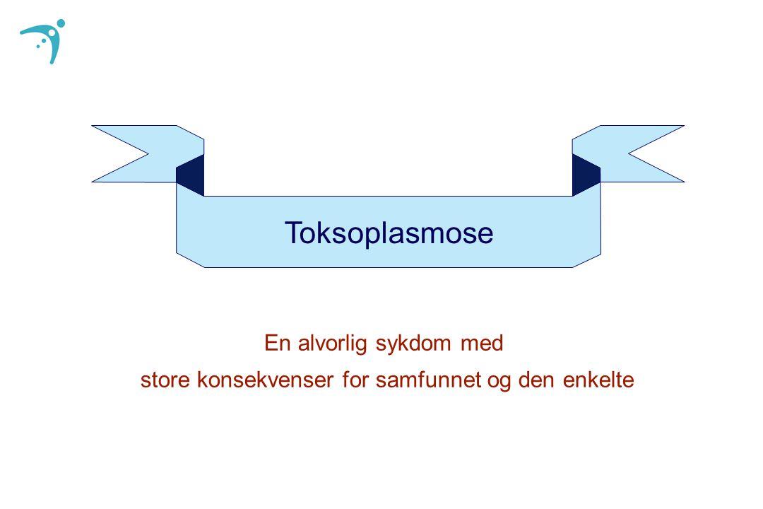 Toksoplasmose En alvorlig sykdom med store konsekvenser for samfunnet og den enkelte