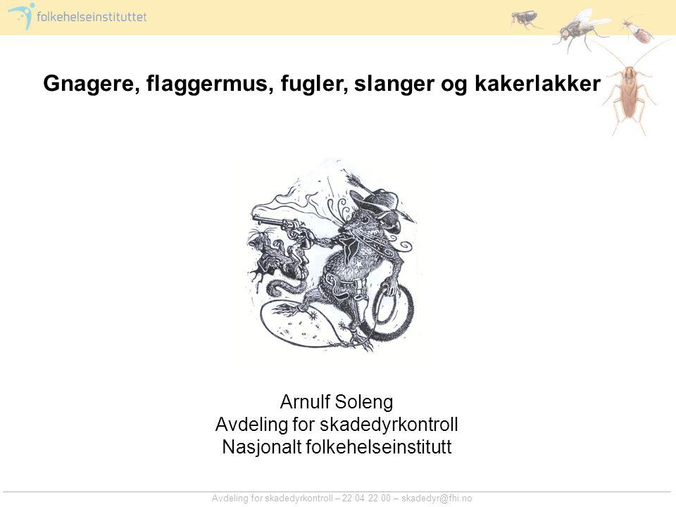 Avdeling for skadedyrkontroll – 22 04 22 00 – skadedyr@fhi.no Gnagere, flaggermus, fugler, slanger og kakerlakker Arnulf Soleng Avdeling for skadedyrk
