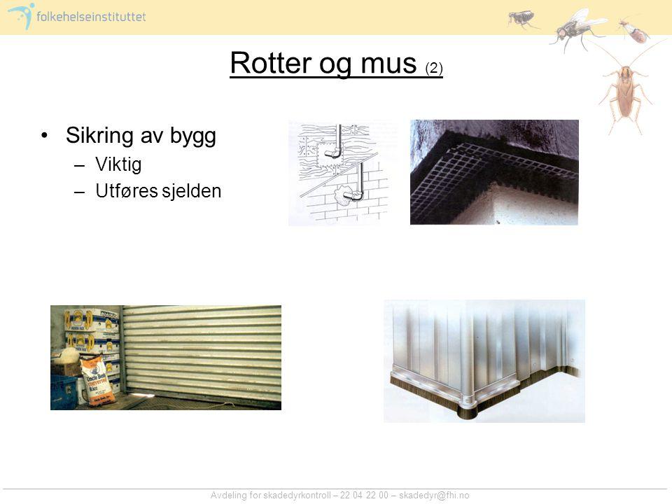 Avdeling for skadedyrkontroll – 22 04 22 00 – skadedyr@fhi.no Rotter og mus (2) Sikring av bygg –Viktig –Utføres sjelden