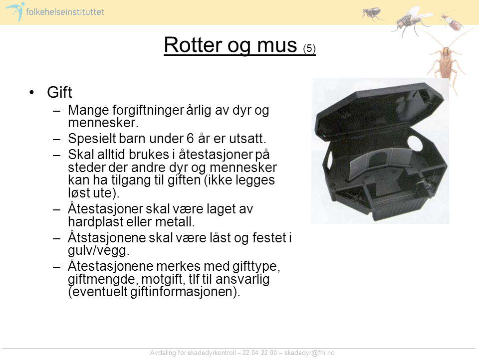 Avdeling for skadedyrkontroll – 22 04 22 00 – skadedyr@fhi.no Rotter og mus (5) Gift –Mange forgiftninger årlig av dyr og mennesker. –Spesielt barn un