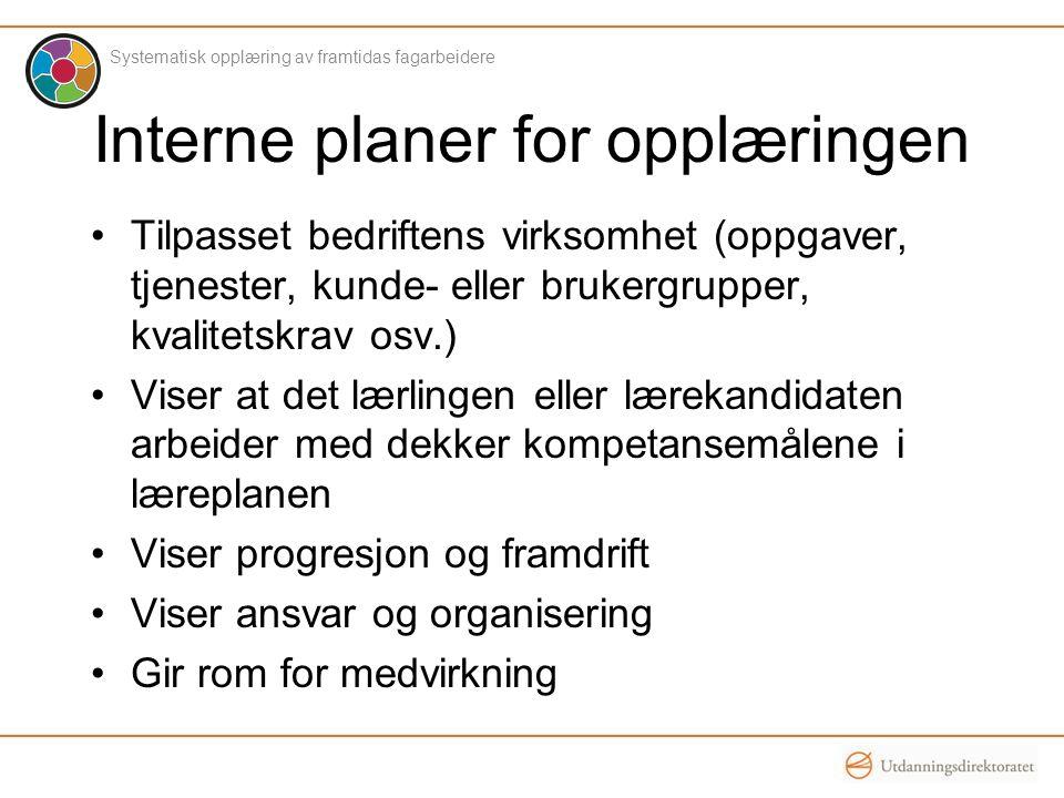 Individuelle planer Interne planer må tilpasses forutsetninger, interesser og behov hos den enkelte.