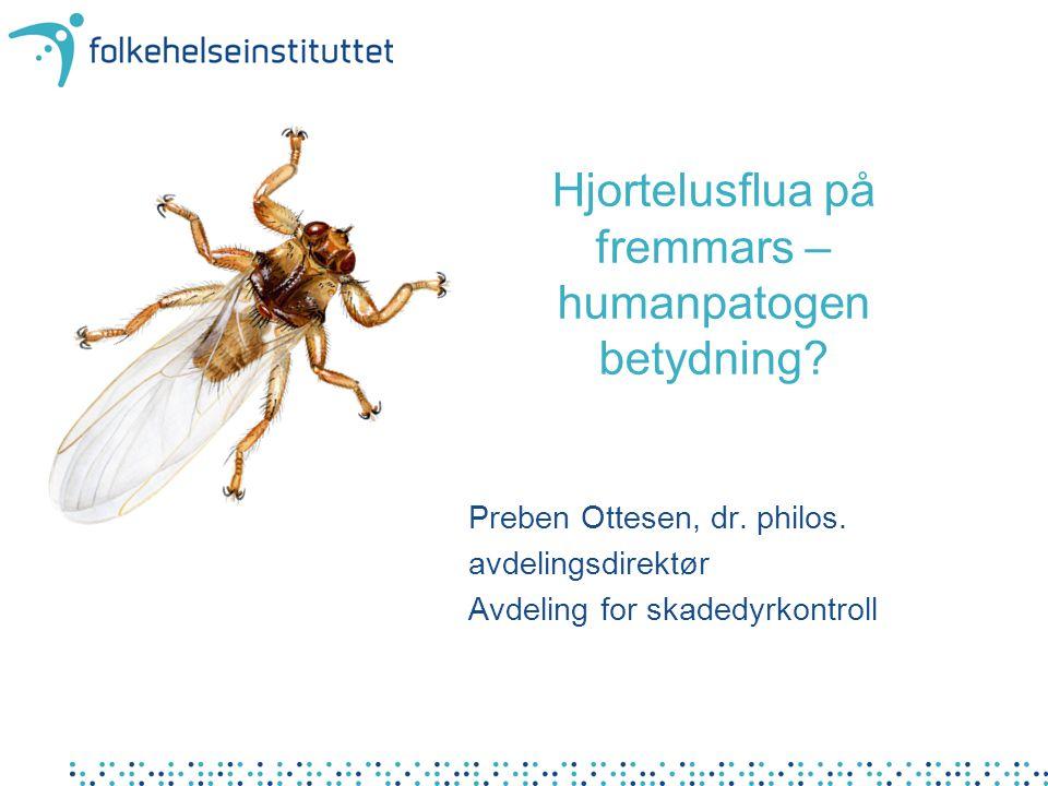 Hjortelusflua på fremmars – humanpatogen betydning? Preben Ottesen, dr. philos. avdelingsdirektør Avdeling for skadedyrkontroll