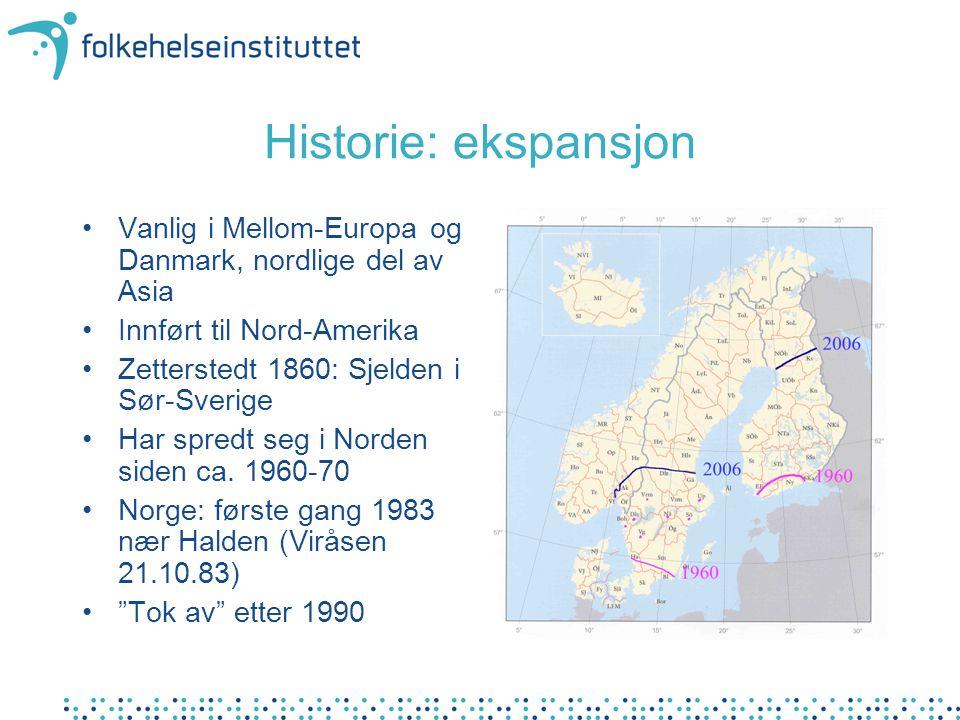 Historie: ekspansjon Vanlig i Mellom-Europa og Danmark, nordlige del av Asia Innført til Nord-Amerika Zetterstedt 1860: Sjelden i Sør-Sverige Har spre