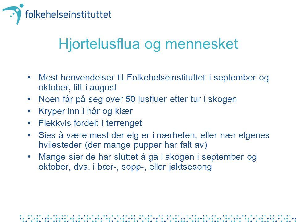 Hjortelusflua og mennesket Mest henvendelser til Folkehelseinstituttet i september og oktober, litt i august Noen får på seg over 50 lusfluer etter tu