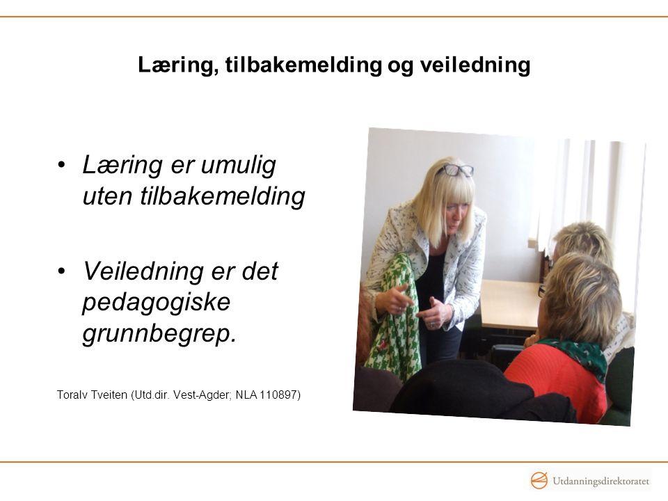 Læring, tilbakemelding og veiledning Læring er umulig uten tilbakemelding Veiledning er det pedagogiske grunnbegrep. Toralv Tveiten (Utd.dir. Vest-Agd
