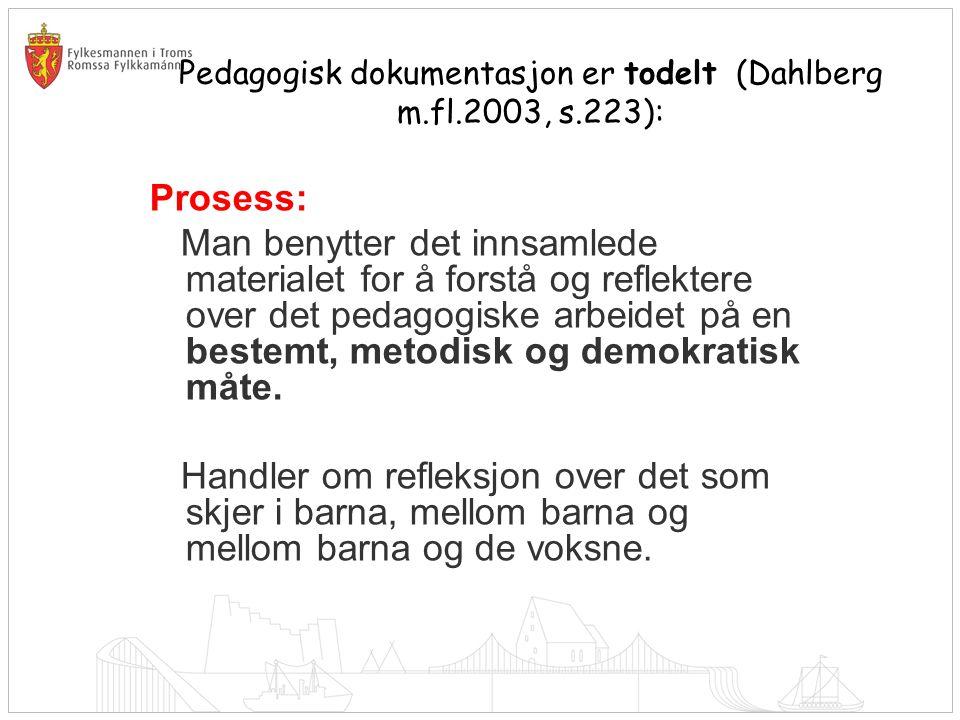 Pedagogisk dokumentasjon er todelt (Dahlberg m.fl.2003, s.223): Prosess: Man benytter det innsamlede materialet for å forstå og reflektere over det pe