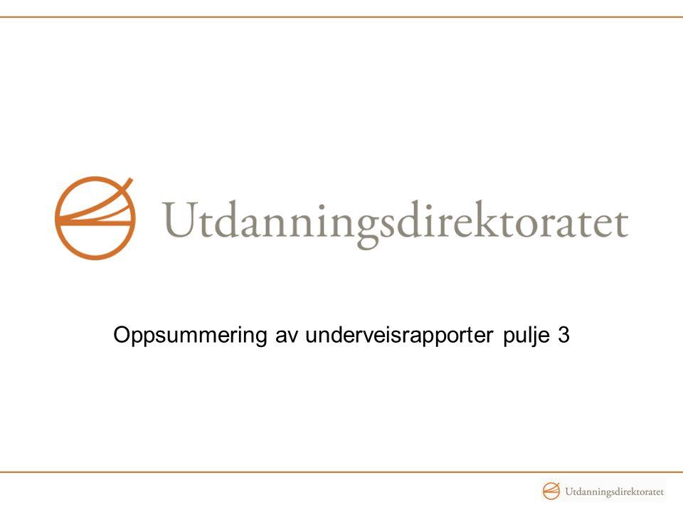 Oppsummering av underveisrapporter pulje 3
