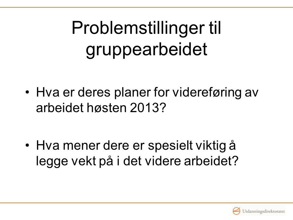 Problemstillinger til gruppearbeidet Hva er deres planer for videreføring av arbeidet høsten 2013? Hva mener dere er spesielt viktig å legge vekt på i