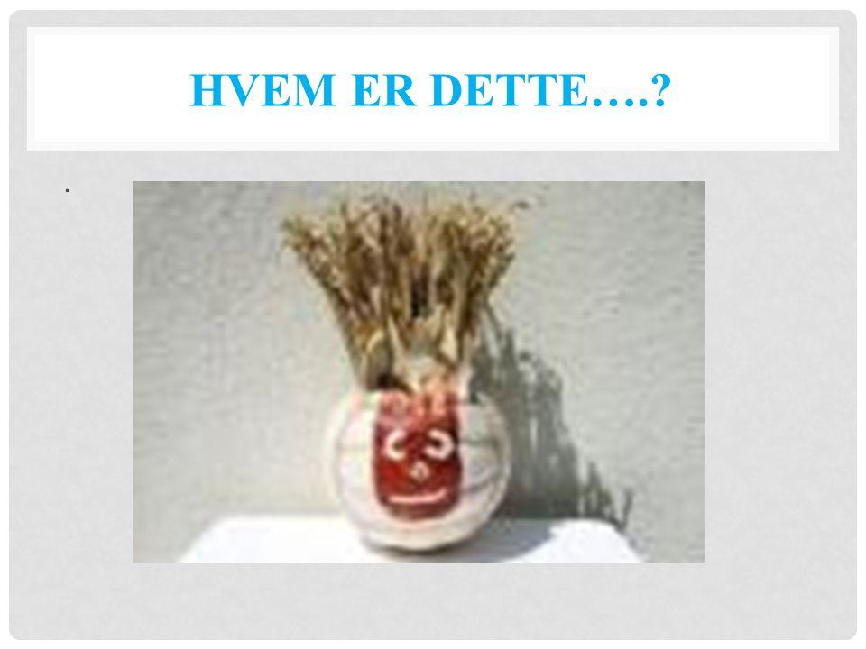 HVEM ER DETTE….?.