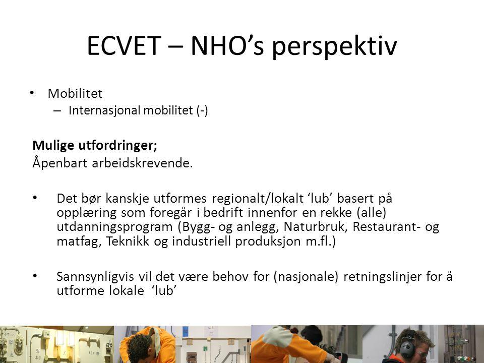 ECVET – NHO's perspektiv Mobilitet – Internasjonal mobilitet (-) Mulige utfordringer; Åpenbart arbeidskrevende. Det bør kanskje utformes regionalt/lok
