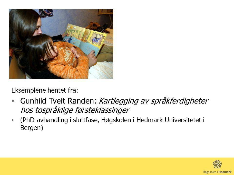 Eksemplene hentet fra: Gunhild Tveit Randen: Kartlegging av språkferdigheter hos tospråklige førsteklassinger (PhD-avhandling i sluttfase, Høgskolen i Hedmark-Universitetet i Bergen)
