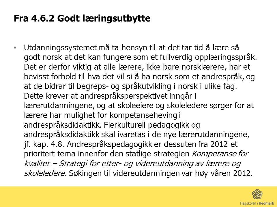Både det fleirkulturelle perspektivet og andrespråksperspektivet må bli ein dimensjon ved den obligatoriske utdanninga for alle norsklærarar (s.