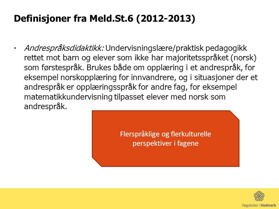 Definisjoner fra Meld.St.6 (2012-2013) Andrespråksdidaktikk: Undervisningslære/praktisk pedagogikk rettet mot barn og elever som ikke har majoritetsspråket (norsk) som førstespråk.