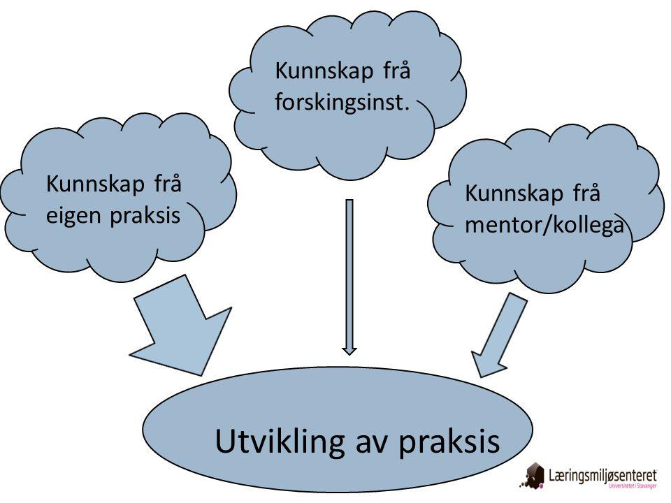Utvikling av praksis Kunnskap frå eigen praksis Kunnskap frå forskingsinst. Kunnskap frå mentor/kollega