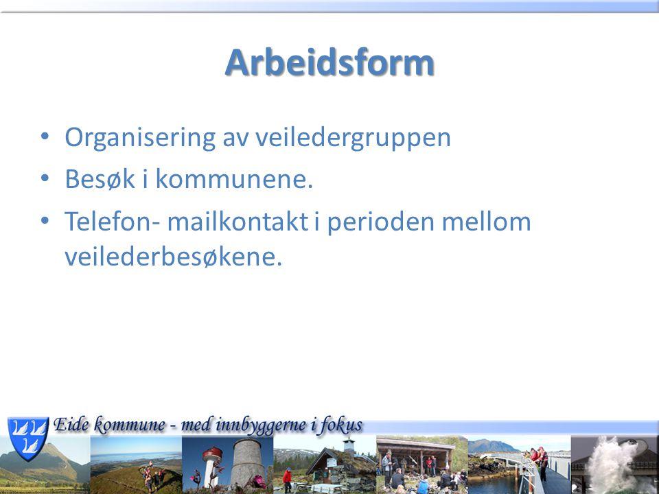 Arbeidsform Organisering av veiledergruppen Besøk i kommunene. Telefon- mailkontakt i perioden mellom veilederbesøkene.