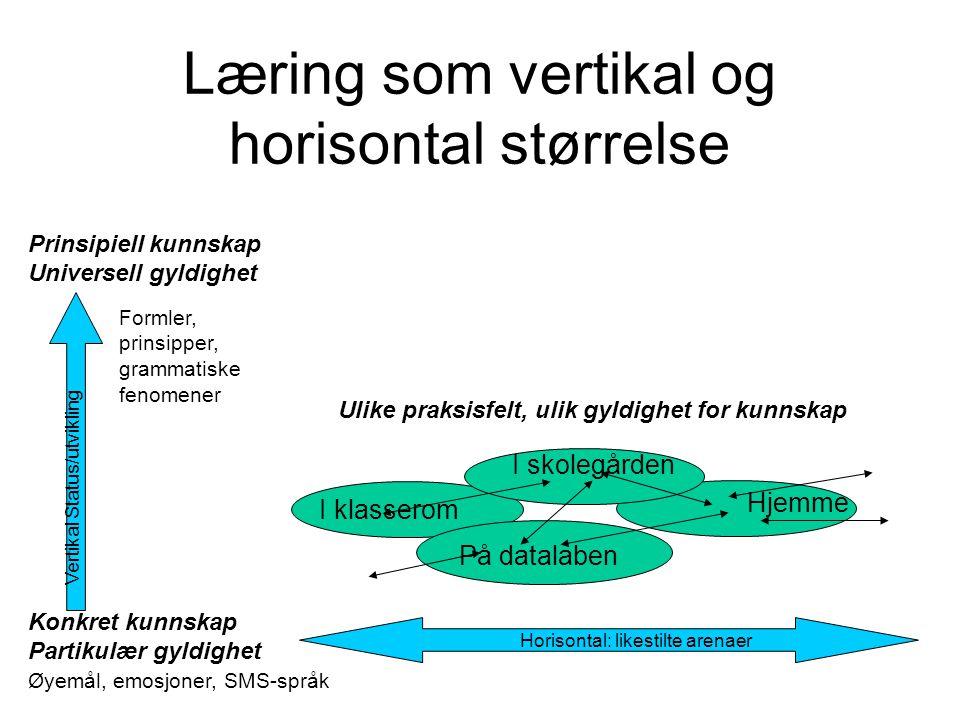 Læring som vertikal og horisontal størrelse Prinsipiell kunnskap Universell gyldighet I klasserom Konkret kunnskap Partikulær gyldighet På datalaben I