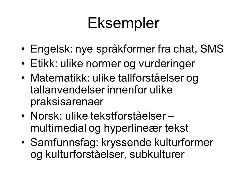 Eksempler Engelsk: nye språkformer fra chat, SMS Etikk: ulike normer og vurderinger Matematikk: ulike tallforståelser og tallanvendelser innenfor ulik