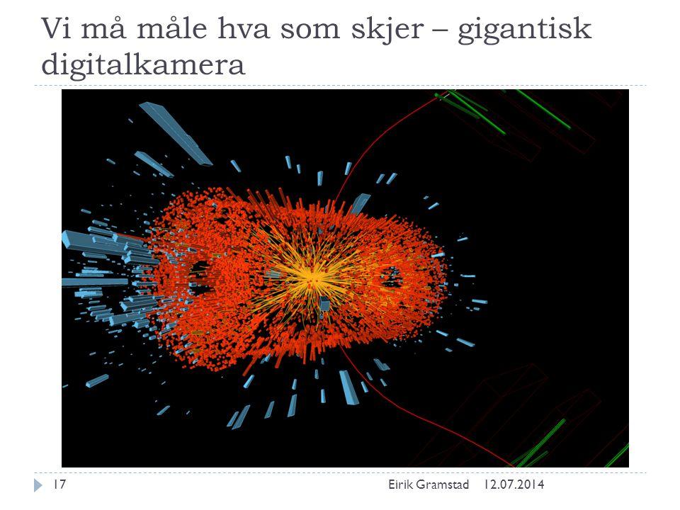 Vi må måle hva som skjer – gigantisk digitalkamera 12.07.2014Eirik Gramstad17