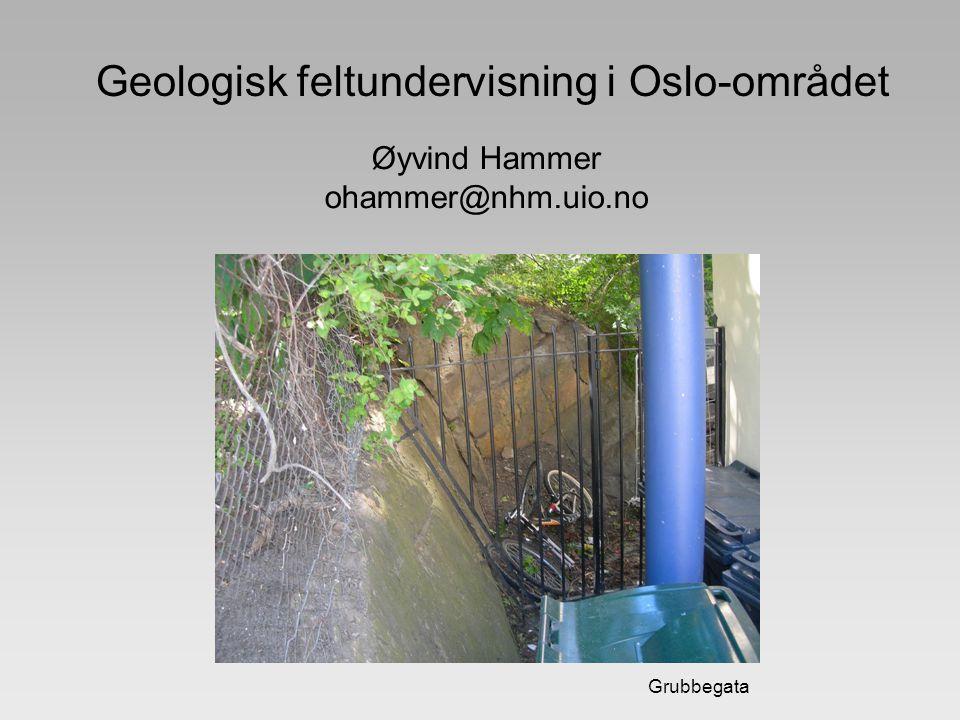 Grubbegata Geologisk feltundervisning i Oslo-området Øyvind Hammer ohammer@nhm.uio.no