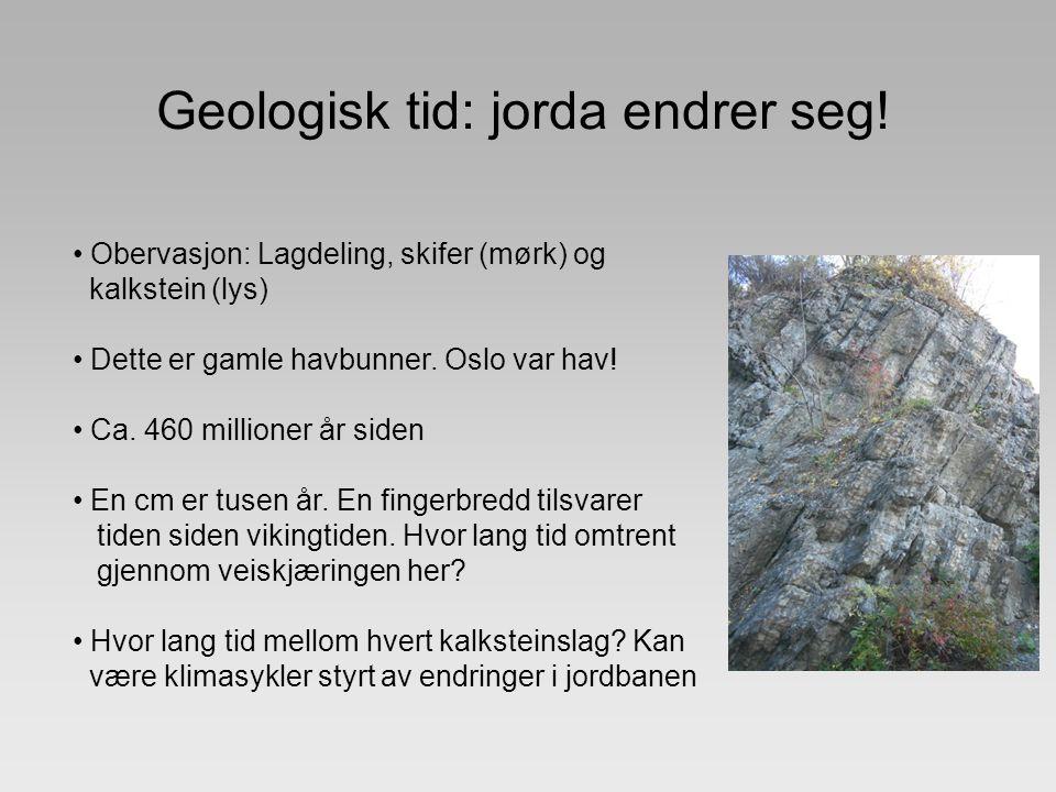 Geologisk tid: jorda endrer seg! Obervasjon: Lagdeling, skifer (mørk) og kalkstein (lys) Dette er gamle havbunner. Oslo var hav! Ca. 460 millioner år