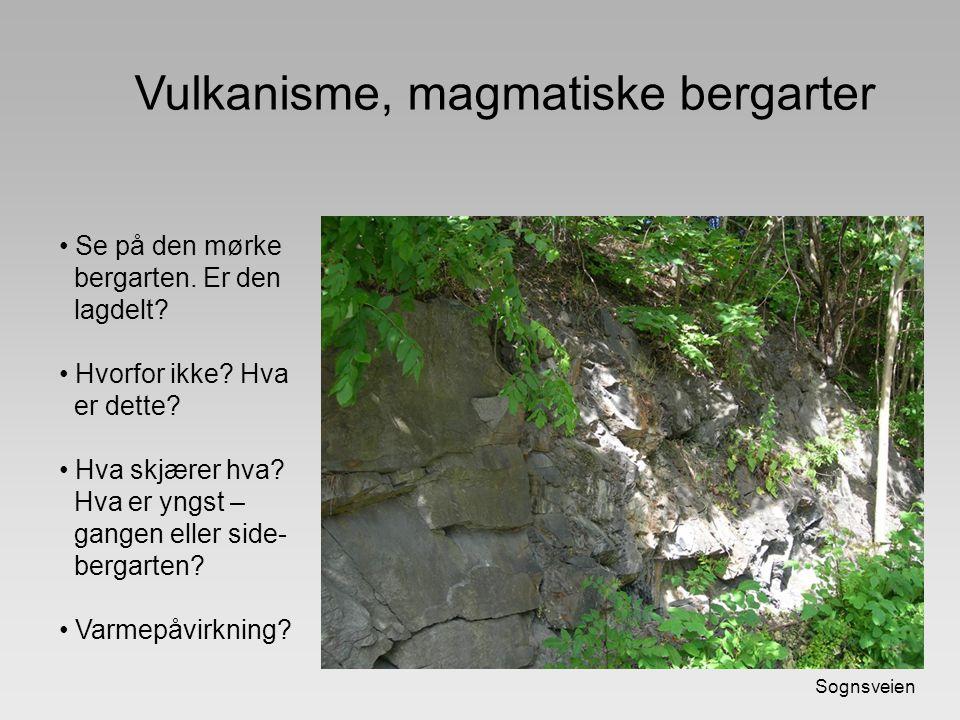 Sognsveien Vulkanisme, magmatiske bergarter Se på den mørke bergarten. Er den lagdelt? Hvorfor ikke? Hva er dette? Hva skjærer hva? Hva er yngst – gan