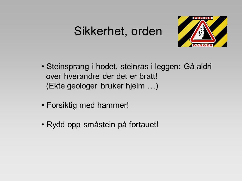 Sikkerhet, orden Steinsprang i hodet, steinras i leggen: Gå aldri over hverandre der det er bratt! (Ekte geologer bruker hjelm …) Forsiktig med hammer