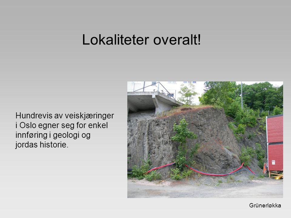 Grünerløkka Lokaliteter overalt! Hundrevis av veiskjæringer i Oslo egner seg for enkel innføring i geologi og jordas historie.