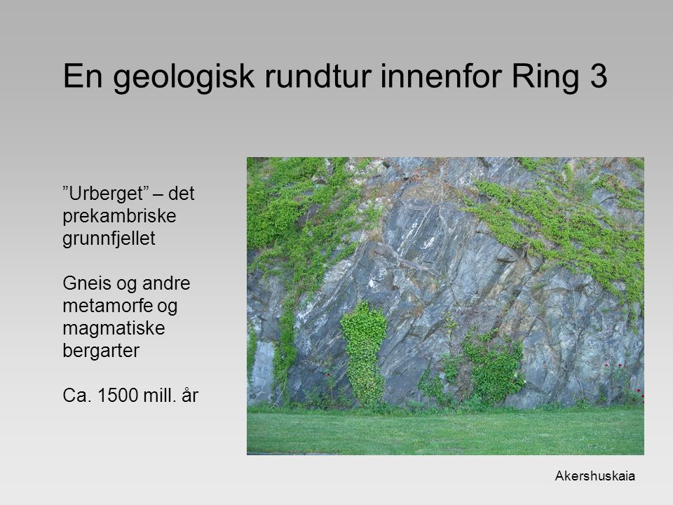 """En geologisk rundtur innenfor Ring 3 Akershuskaia """"Urberget"""" – det prekambriske grunnfjellet Gneis og andre metamorfe og magmatiske bergarter Ca. 1500"""