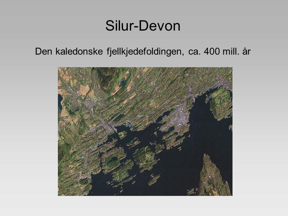 Silur-Devon Den kaledonske fjellkjedefoldingen, ca. 400 mill. år Geological localities in central Oslo Bilder ©2007 TerraMetrics - VilkÃ¥r for brukVil