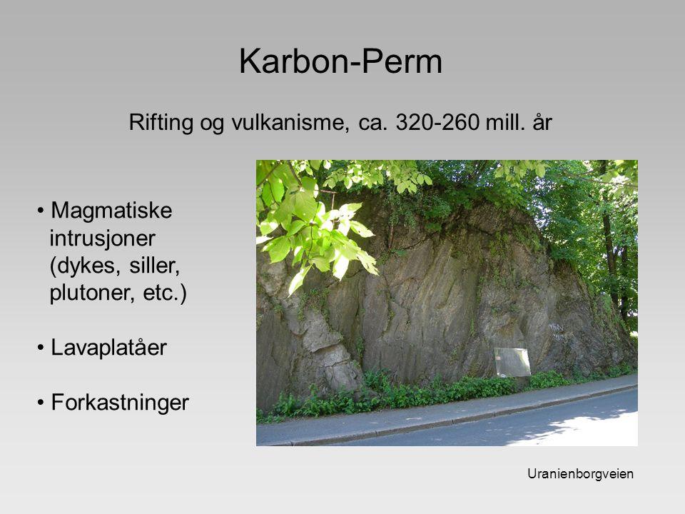 Karbon-Perm Rifting og vulkanisme, ca. 320-260 mill. år Uranienborgveien Magmatiske intrusjoner (dykes, siller, plutoner, etc.) Lavaplatåer Forkastnin
