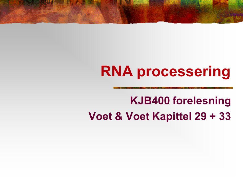 RNA processering KJB400 forelesning Voet & Voet Kapittel 29 + 33