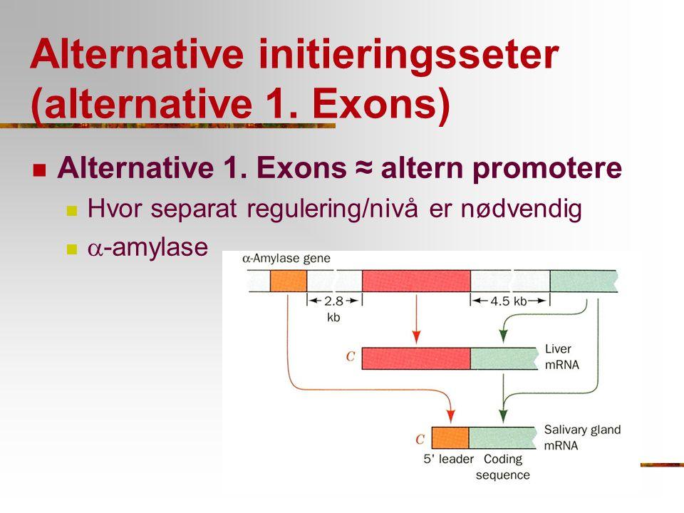 Alternative initieringsseter (alternative 1. Exons) Alternative 1. Exons ≈ altern promotere Hvor separat regulering/nivå er nødvendig  -amylase