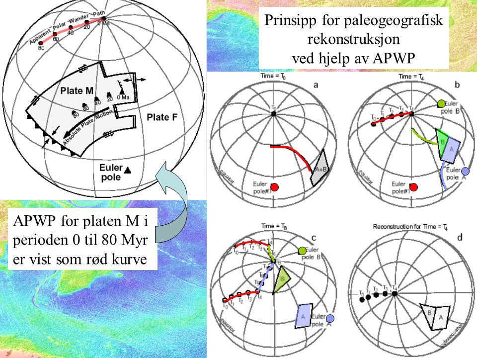 APWP for platen M i perioden 0 til 80 Myr er vist som rød kurve Prinsipp for paleogeografisk rekonstruksjon ved hjelp av APWP