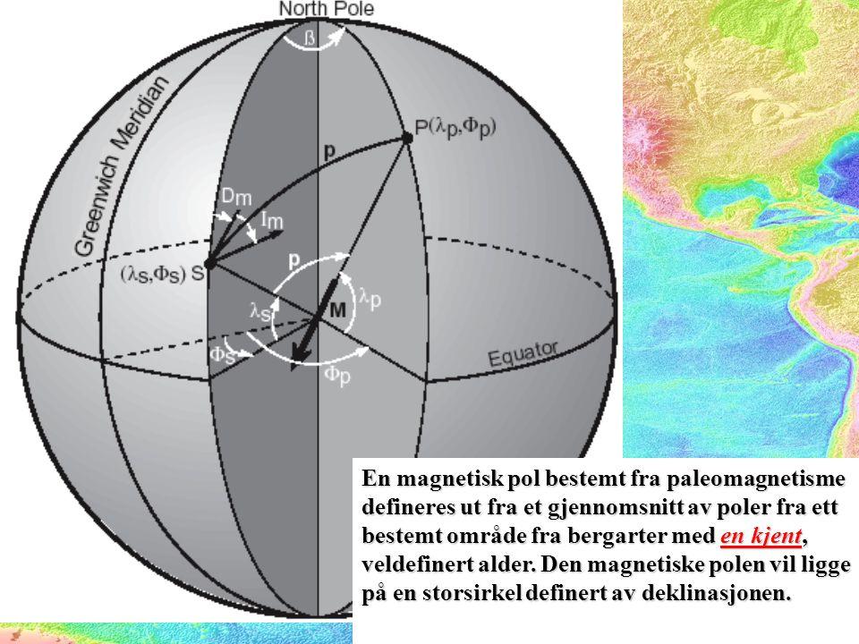 En magnetisk pol bestemt fra paleomagnetisme defineres ut fra et gjennomsnitt av poler fra ett bestemt område fra bergarter med en kjent, veldefinert alder.