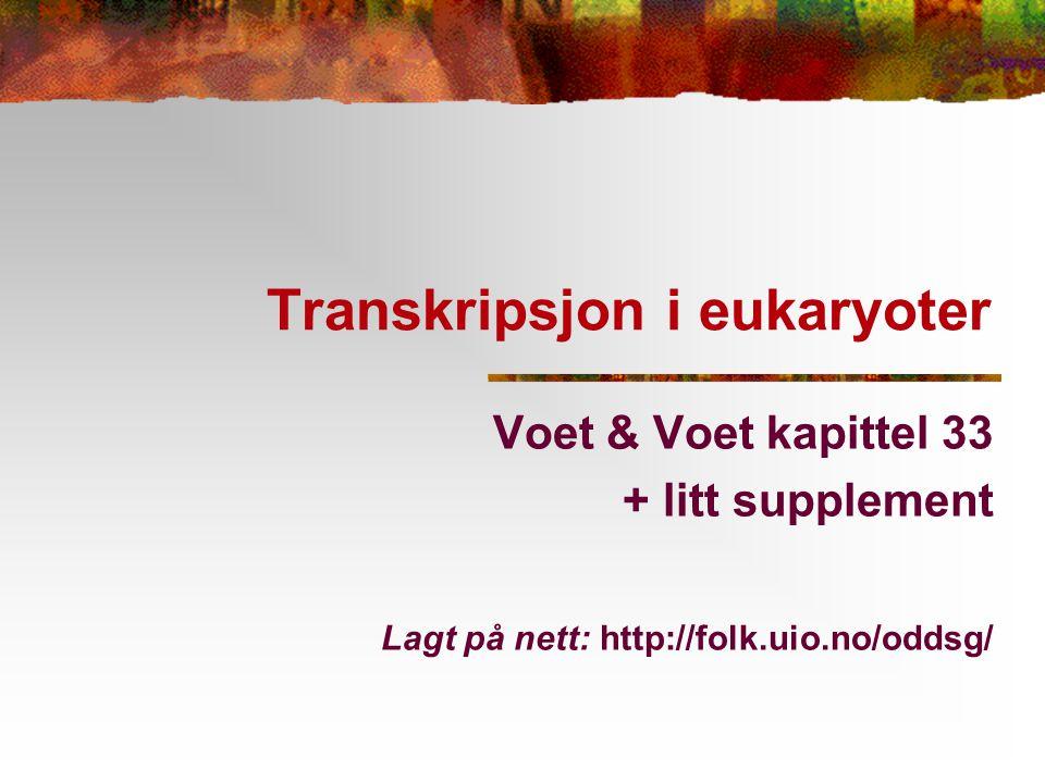 Transkripsjon i eukaryoter Voet & Voet kapittel 33 + litt supplement Lagt på nett: http://folk.uio.no/oddsg/