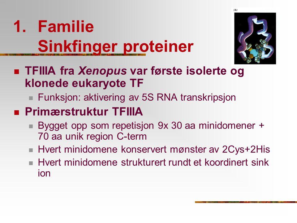 1.Familie Sinkfinger proteiner TFIIIA fra Xenopus var første isolerte og klonede eukaryote TF Funksjon: aktivering av 5S RNA transkripsjon Primærstruk