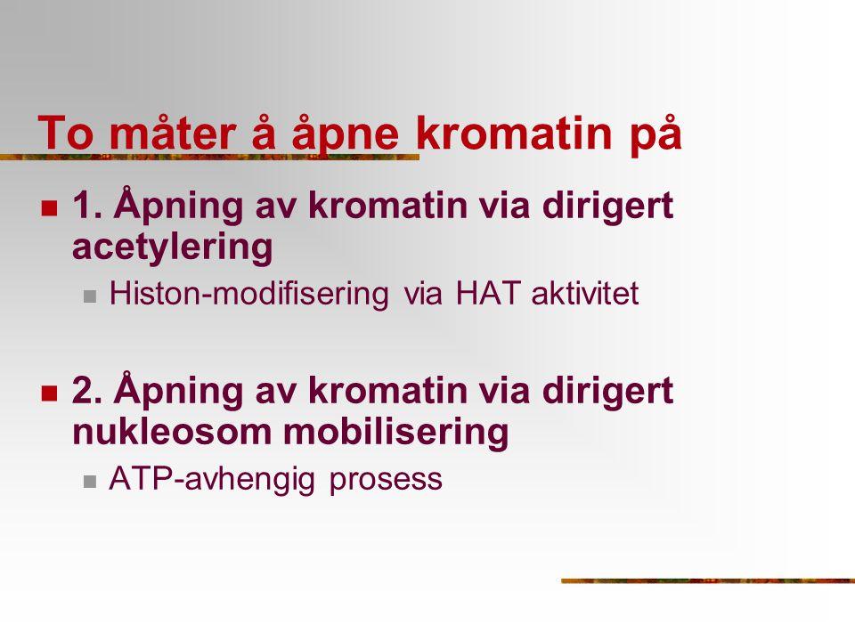 To måter å åpne kromatin på 1. Åpning av kromatin via dirigert acetylering Histon-modifisering via HAT aktivitet 2. Åpning av kromatin via dirigert nu