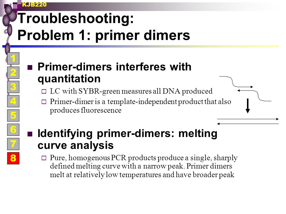 KJB220 Troubleshooting: Problem 1: primer dimers Primer-dimers interferes with quantitation  LC with SYBR-green measures all DNA produced  Primer-di
