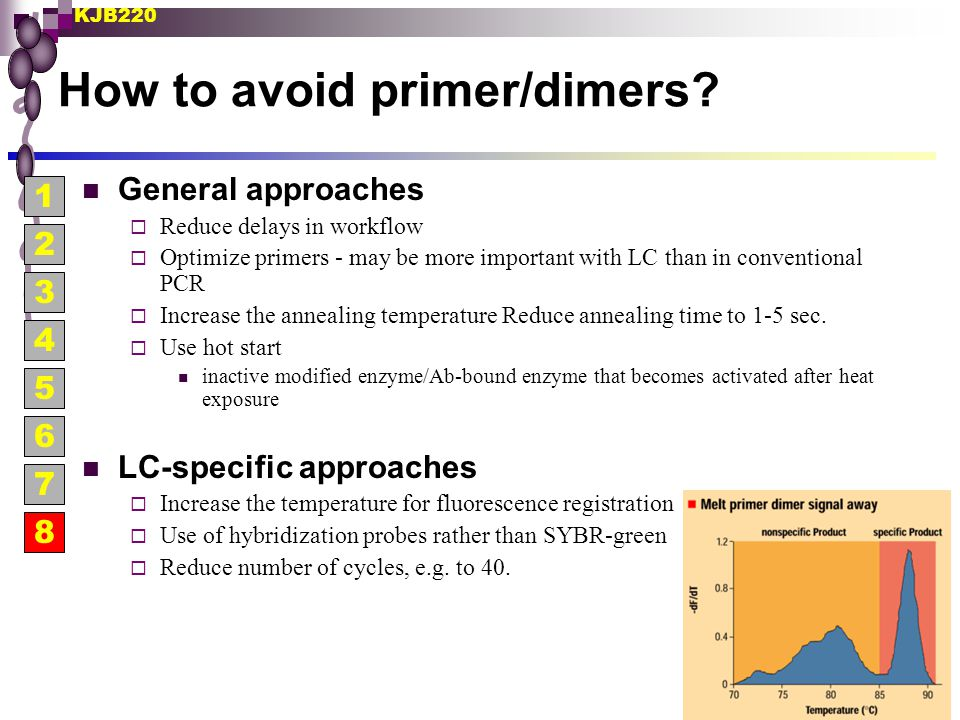 KJB220 How to avoid primer/dimers? General approaches  Reduce delays in workflow  Optimize primers - may be more important with LC than in conventio