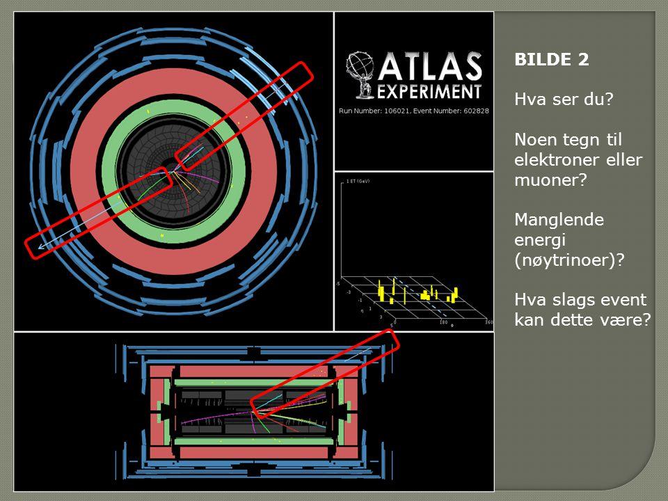 BILDE 2 Hva ser du. Noen tegn til elektroner eller muoner.
